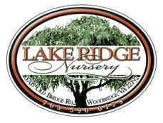 Sip & Shop at Lakeridge Nursery